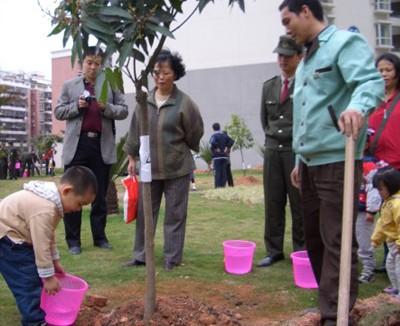 社区集锦 社区活动 植树活动 常安物业|深圳物业管理